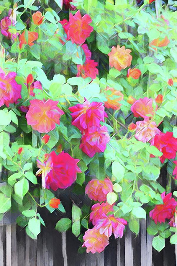 Rose 390 by Pamela Cooper