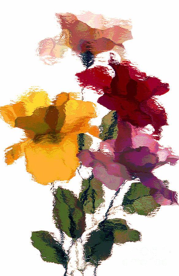Rose 5 by Rich Killion