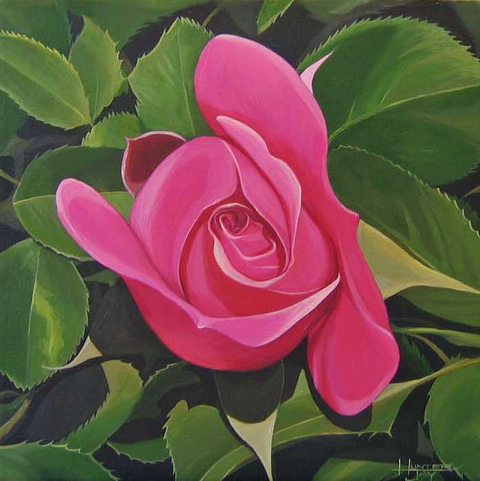 Pink Rose Painting - Rose Arcana by Hunter Jay