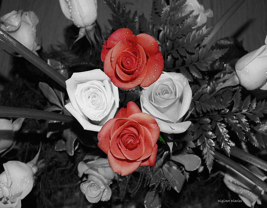 Black And White Photographs Digital Art - Rose Bouquet by DigiArt Diaries by Vicky B Fuller
