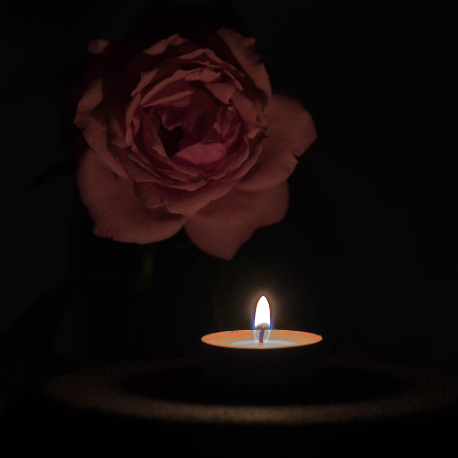 Angle Photograph - Rose Candle by Adrian Bud