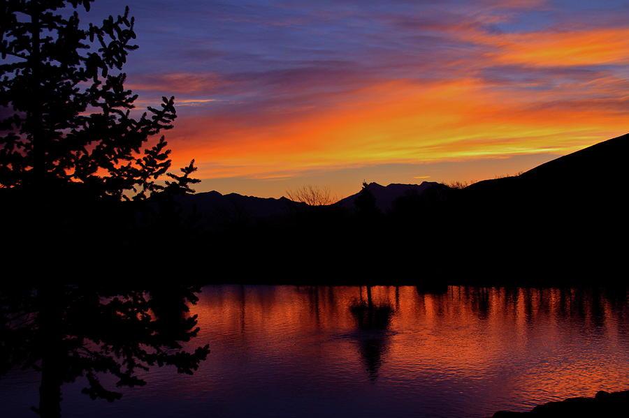 Rose Canyon Morning by Paul Marto