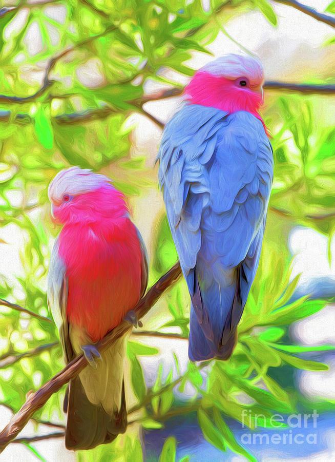 Galahs Photograph - Rose Cockatoos by Sheila Smart Fine Art Photography
