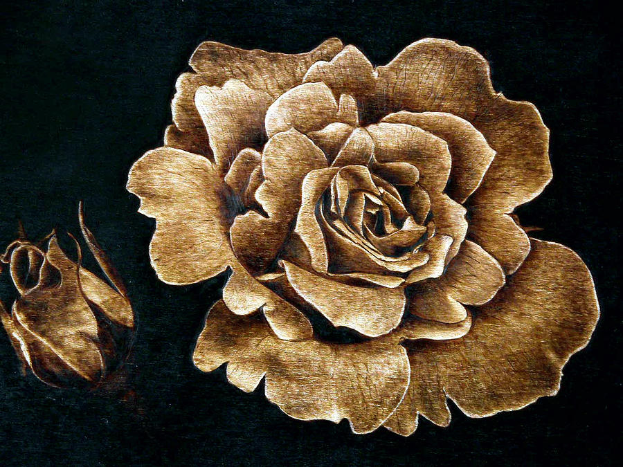 Rose pyrography by dino muradian