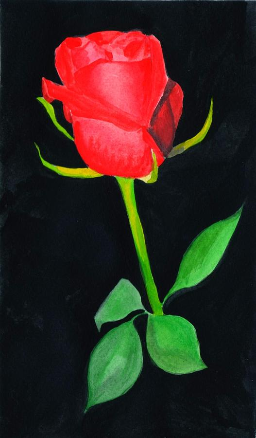 Red Rose Painting - Rose by Eniko Tanyi