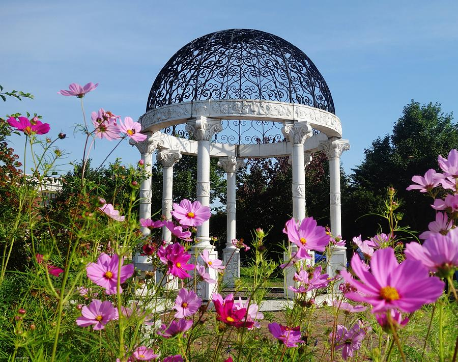 Rose Garden Duluth Mn Photograph By Jan Swart
