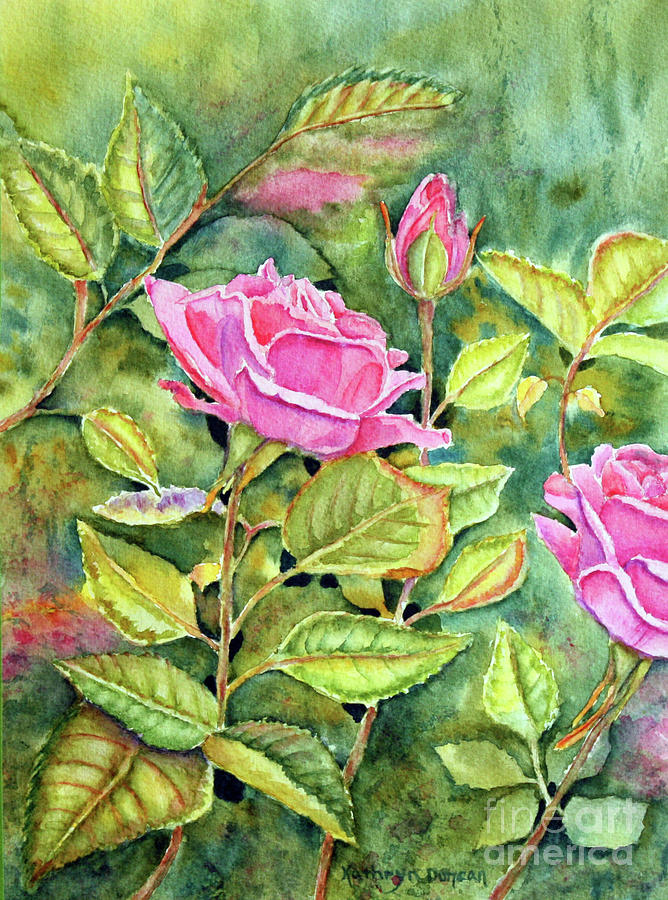 Rose Garden by Kathryn Duncan
