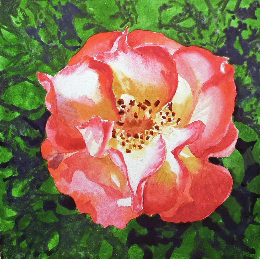 Rose Painting - Rose  by Irina Sztukowski