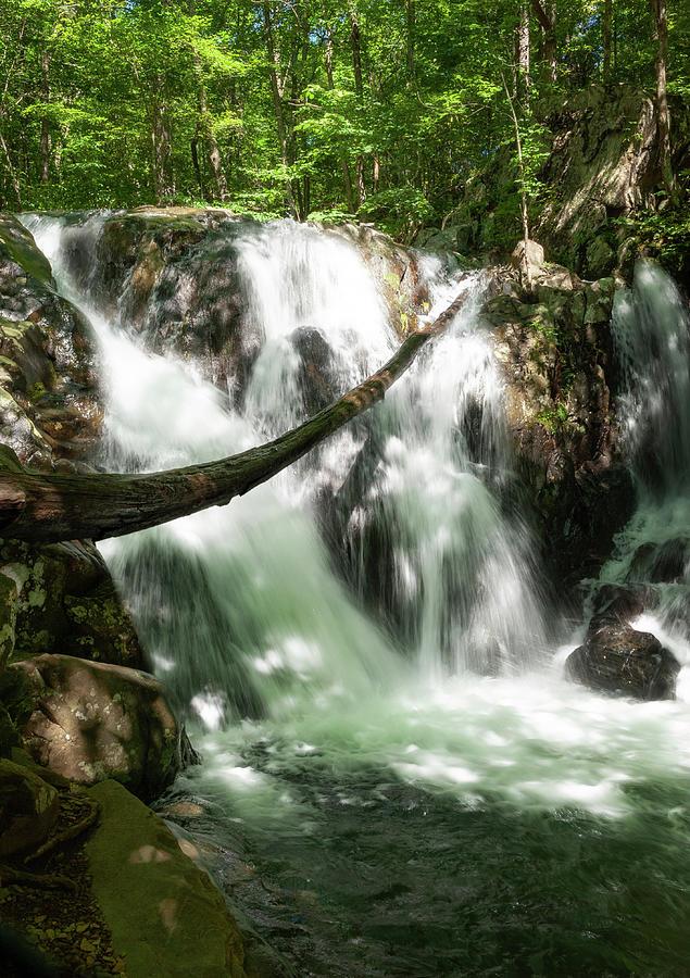 Rose River Falls 1 Photograph