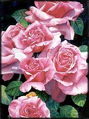 Watercolor Painting - Rose Rose Roses by Diana Miller-pierce