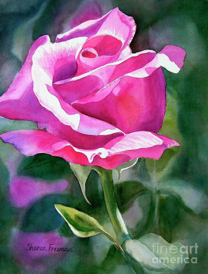 Violet Painting - Rose Violet Bud by Sharon Freeman