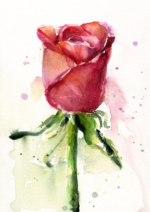 Canvas Art Roses