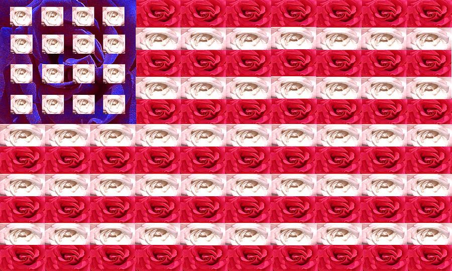 Flag Photograph - Rose White And Blue by Anne Cameron Cutri