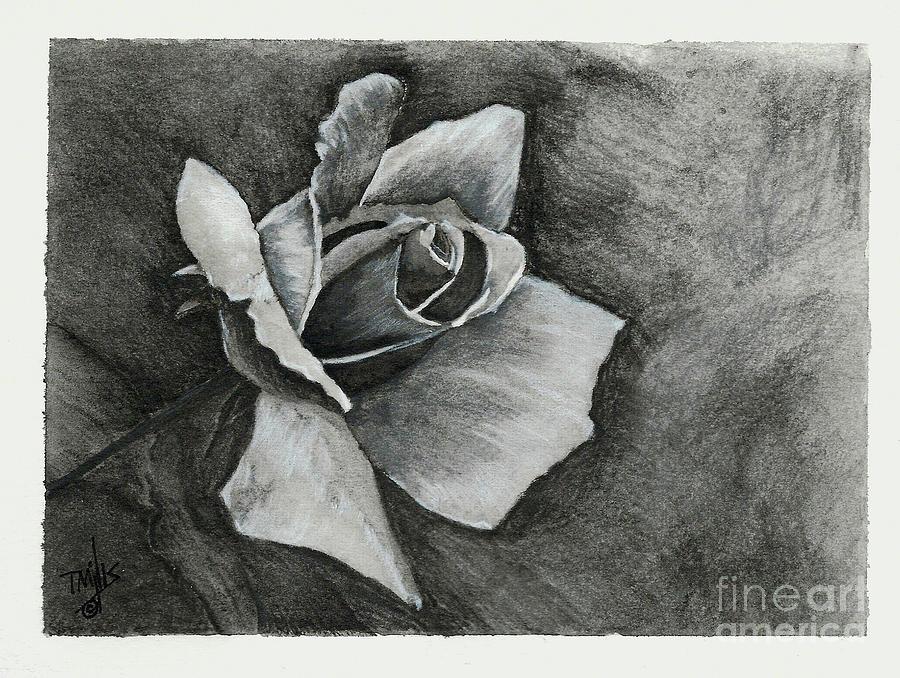 Rose1 by Terri Mills