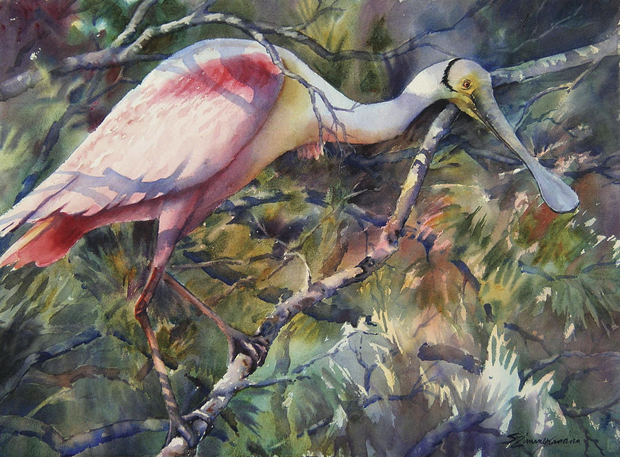 Roseate Spoonbill Painting - Roseate Spoonbill by Sue Zimmermann