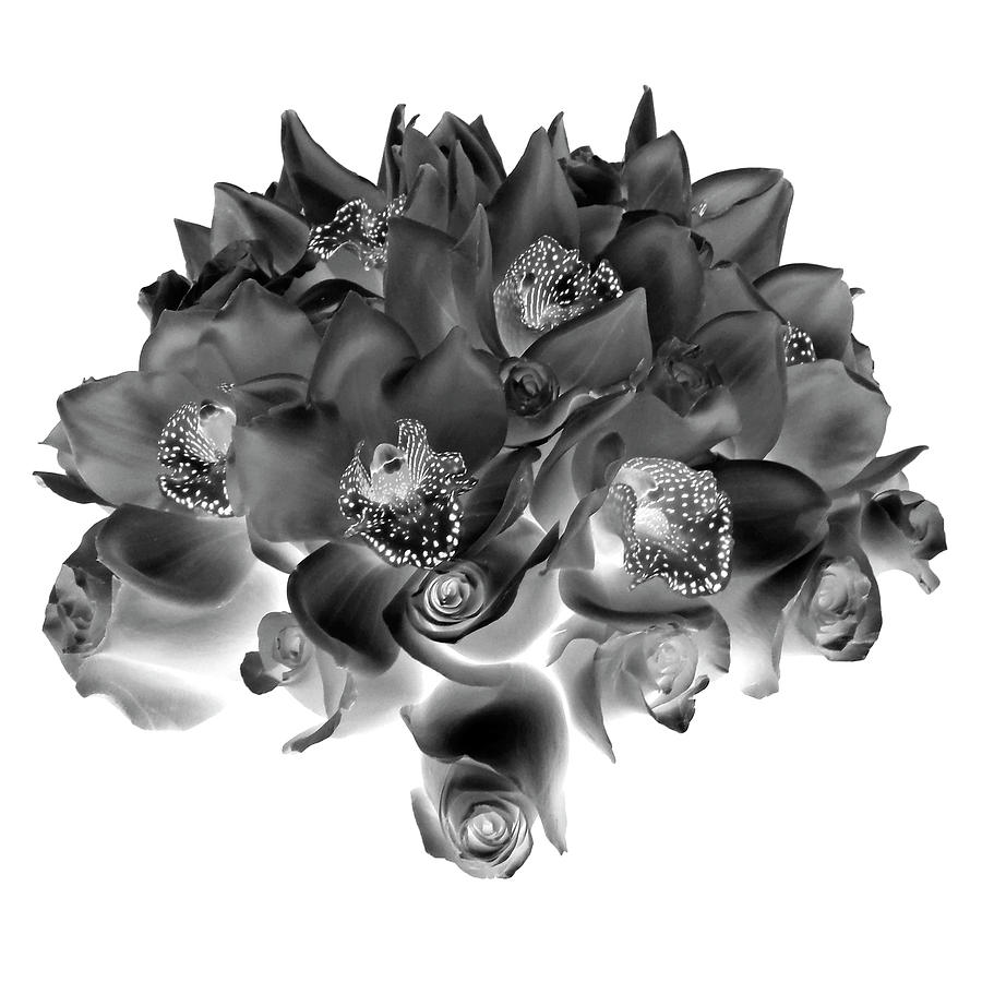 Roses and Orhids I Black and White by Lilia Maloratskiy