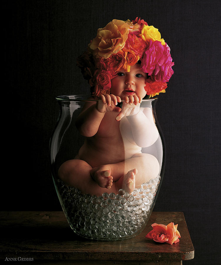 Rose Photograph - Vase of Roses by Anne Geddes