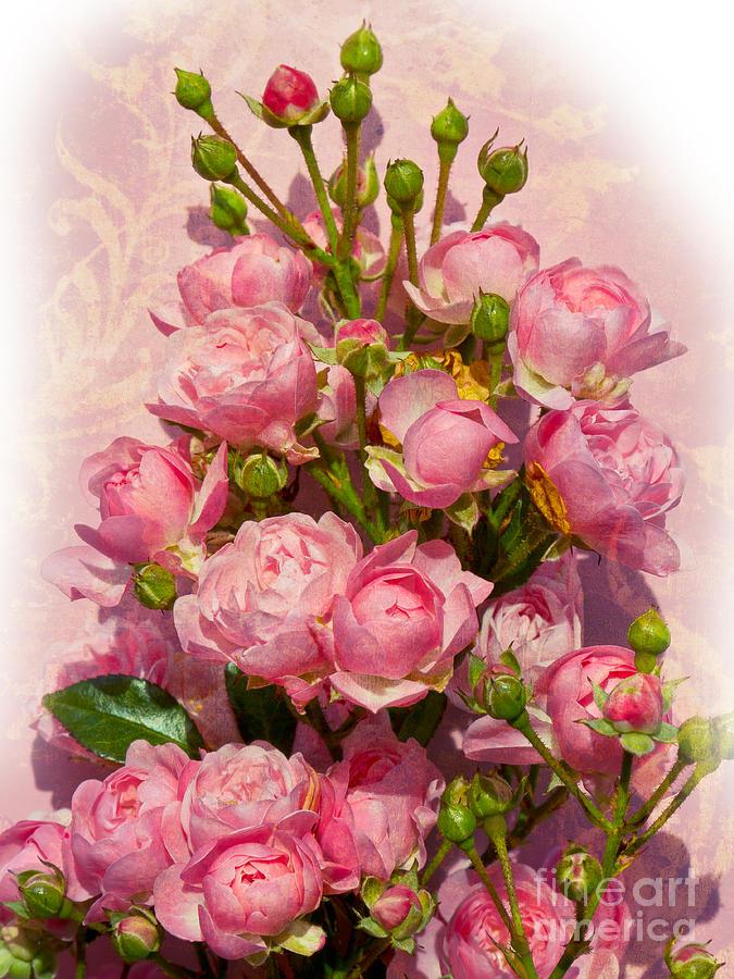 Roses Photograph - Roses Decor by Lutz Baar