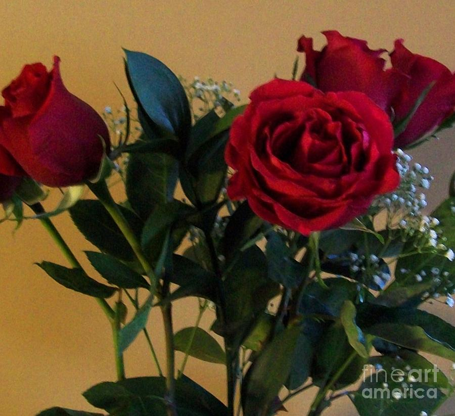 Red Roses Photograph - Roses For Valentines Day by Marsha Heiken