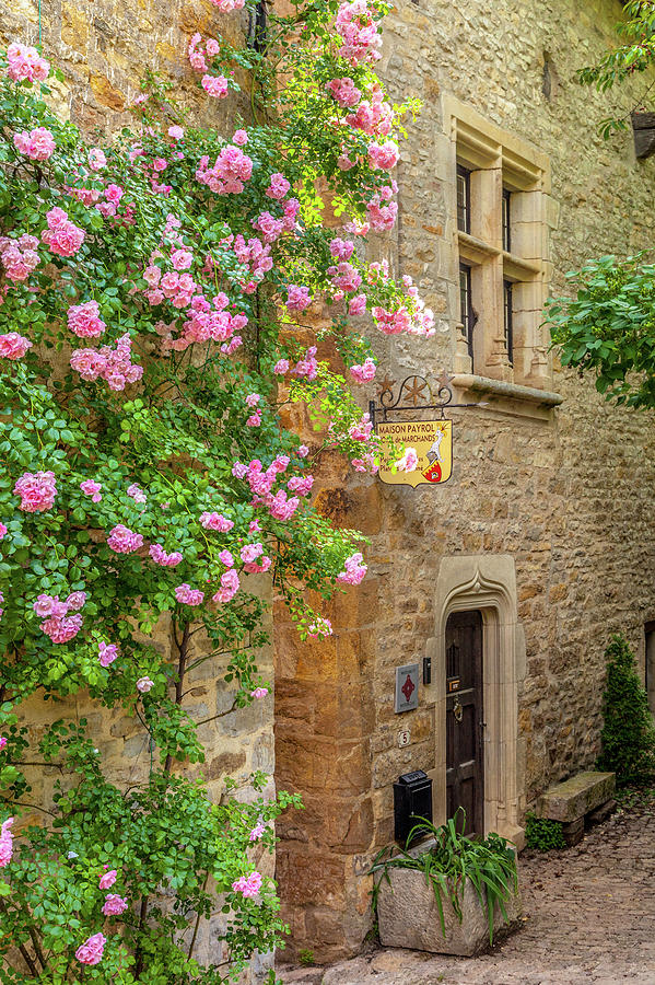 Medieval Photograph - Roses In Bruniquel  by W Chris Fooshee