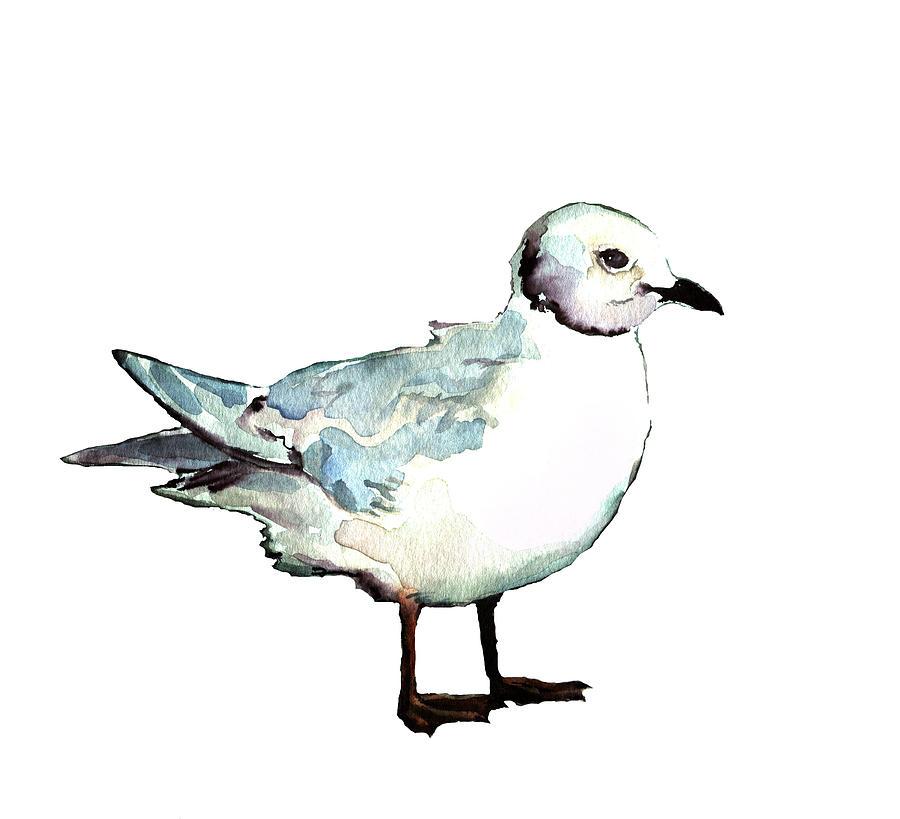 Ross's Gull by Abby McBride