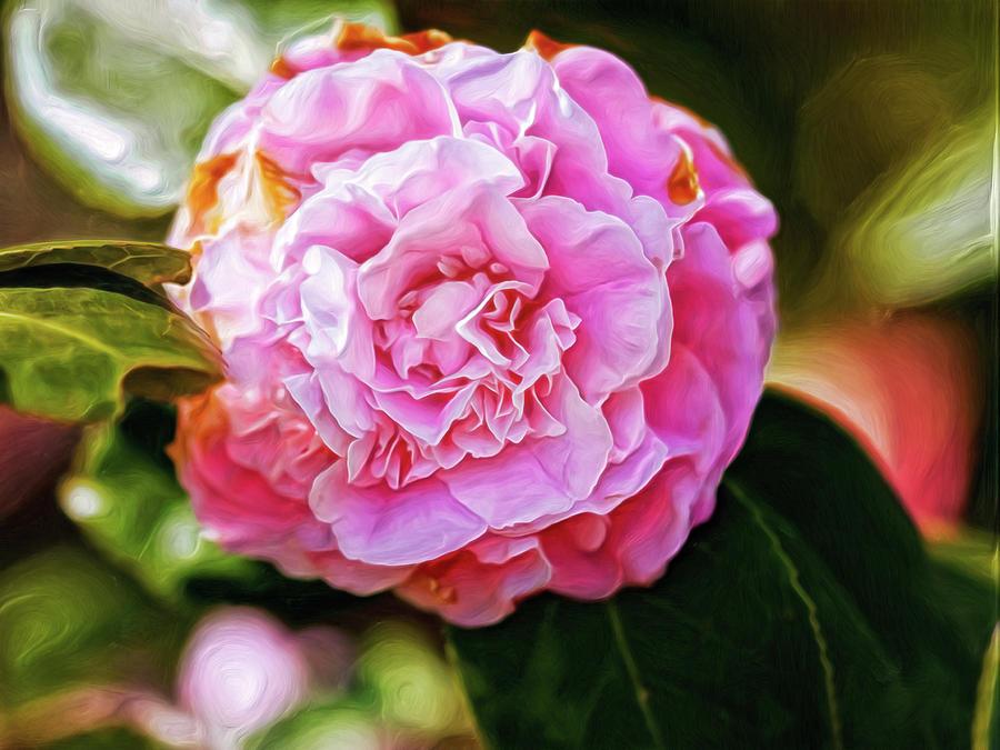 Rosy Cheeks Digital Art by Doctor MEHTA