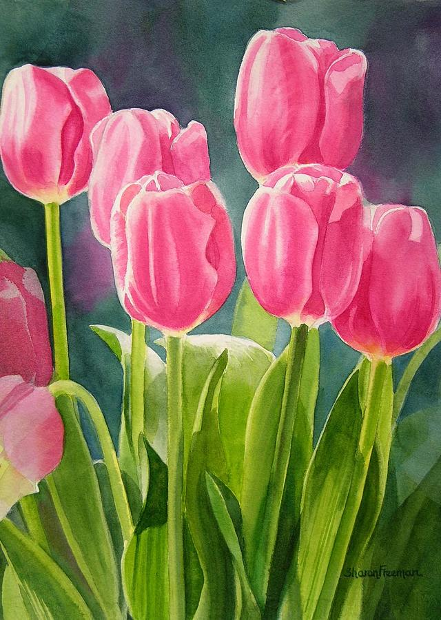 Pink Painting - Rosy Pink Tulips by Sharon Freeman