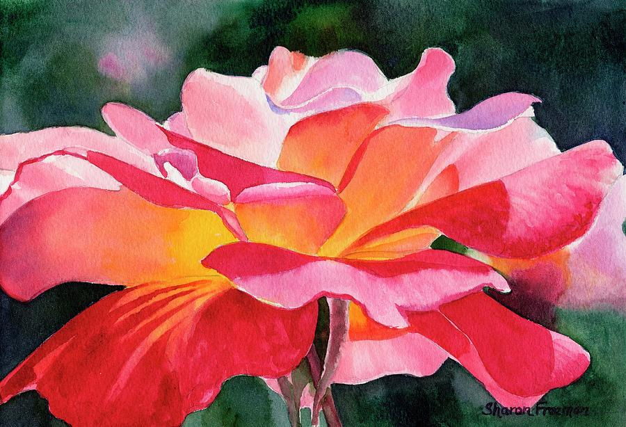 Rose Watercolor Painting - Rosy Red Rose Blossom by Sharon Freeman