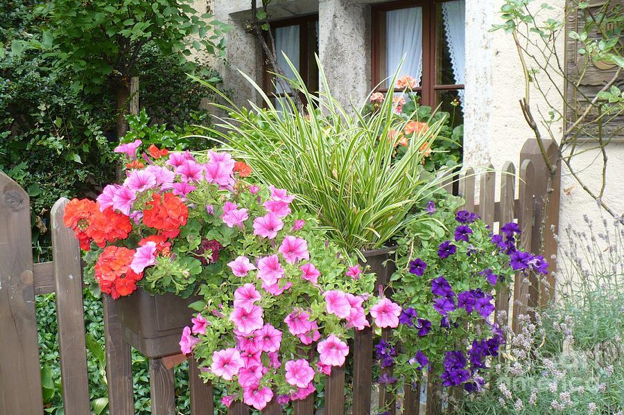 Garden Photograph - Rothenburg Flower Box by Carol Groenen