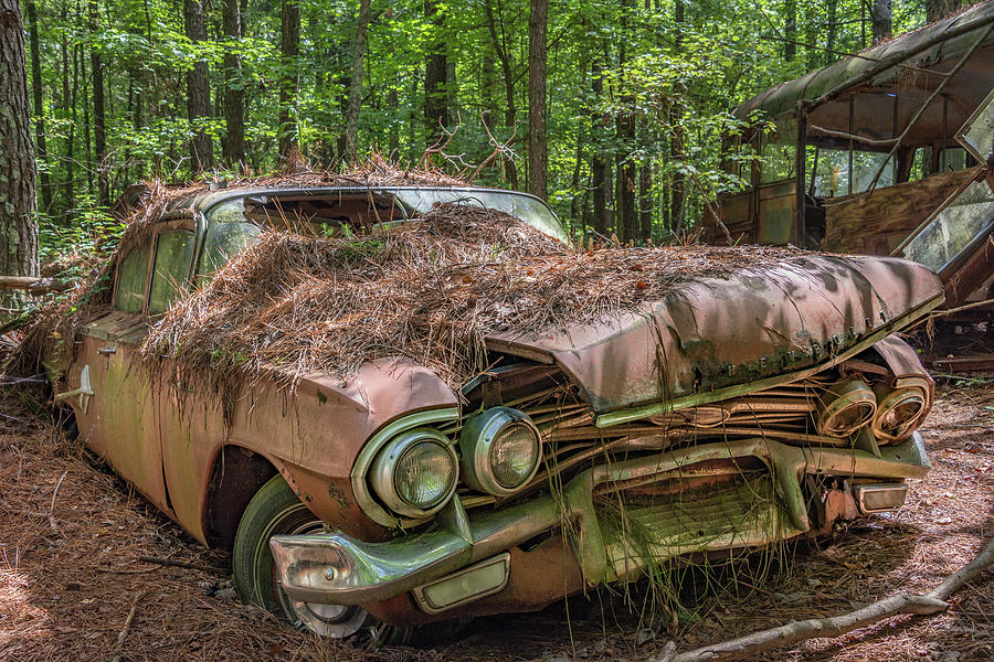 Abandoned Photograph - Rotting Classic in Color by Lindy Grasser