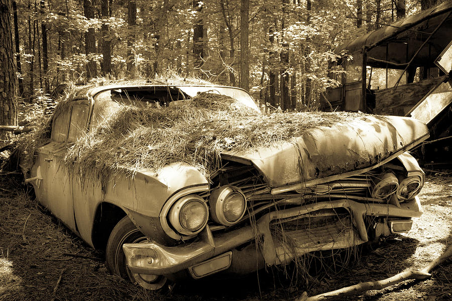 Abandoned Photograph - Rotting Classic by Lindy Grasser