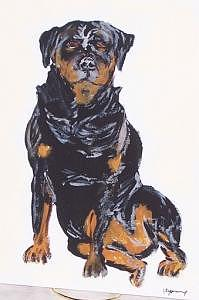 Rotweiller Painting - Rotweiller by Kathy Young