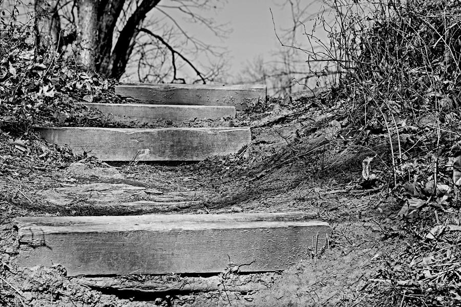 Riverbank Photograph - Rough Steps Up The Riverbank by Gregory Strong