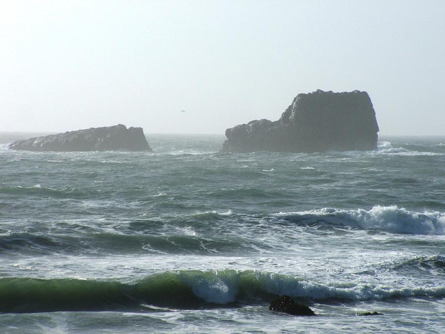Beaches Photograph - Rough Waters by Shari Chavira