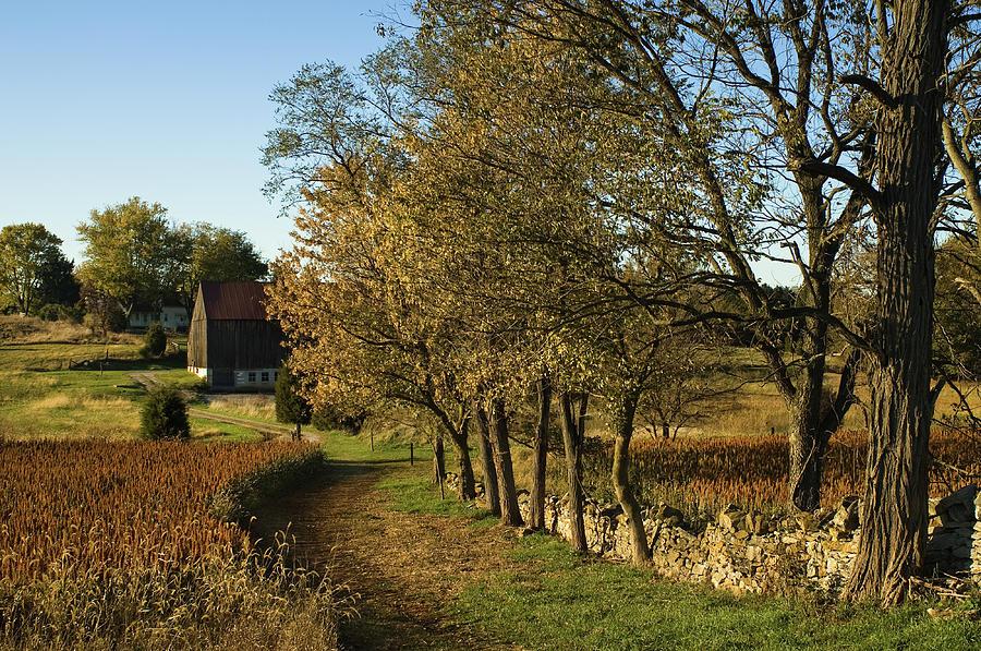 Roulette Farm, Autumn, Antietam Battlefield, Sharpsburg, Marylan by James Oppenheim