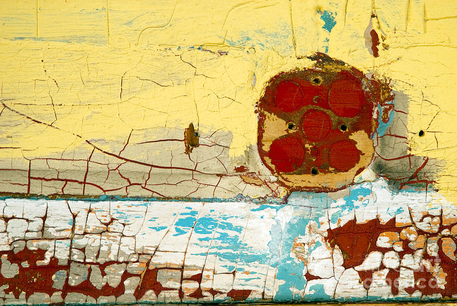 Peeling Paint Photograph - Round And Round We Go by DebraLee Wiseberg