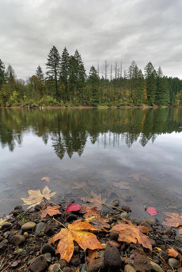 Round Lake Photograph - Round Lake At Lacamas Park In Fall by David Gn