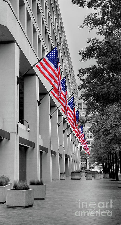 Schmidt Photograph - Row Of Flags by E B Schmidt