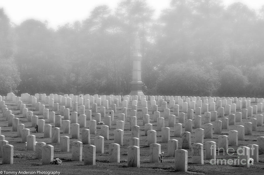 Andersonville Photograph - Rows Of Heros by Tommy Anderson