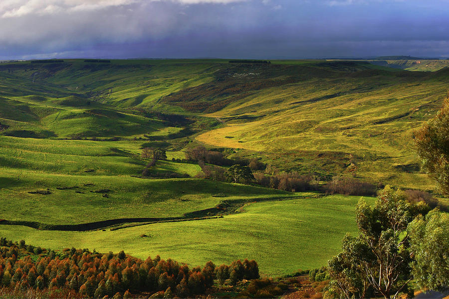 Victoria Photograph - Rowsley Valley by David Hibberd