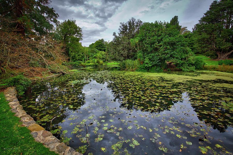 Royal Photograph - Royal Botanical Gardens, Melbourne by Ross Henton