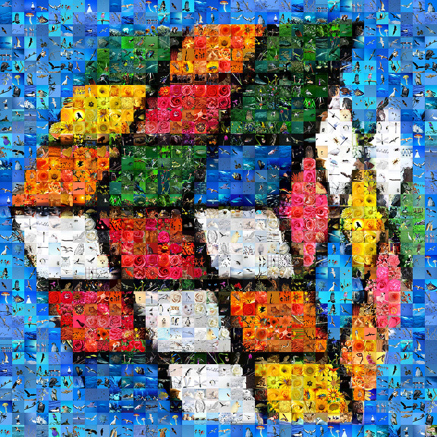 Rubik With Nature Digital Art By Gilberto Viciedo