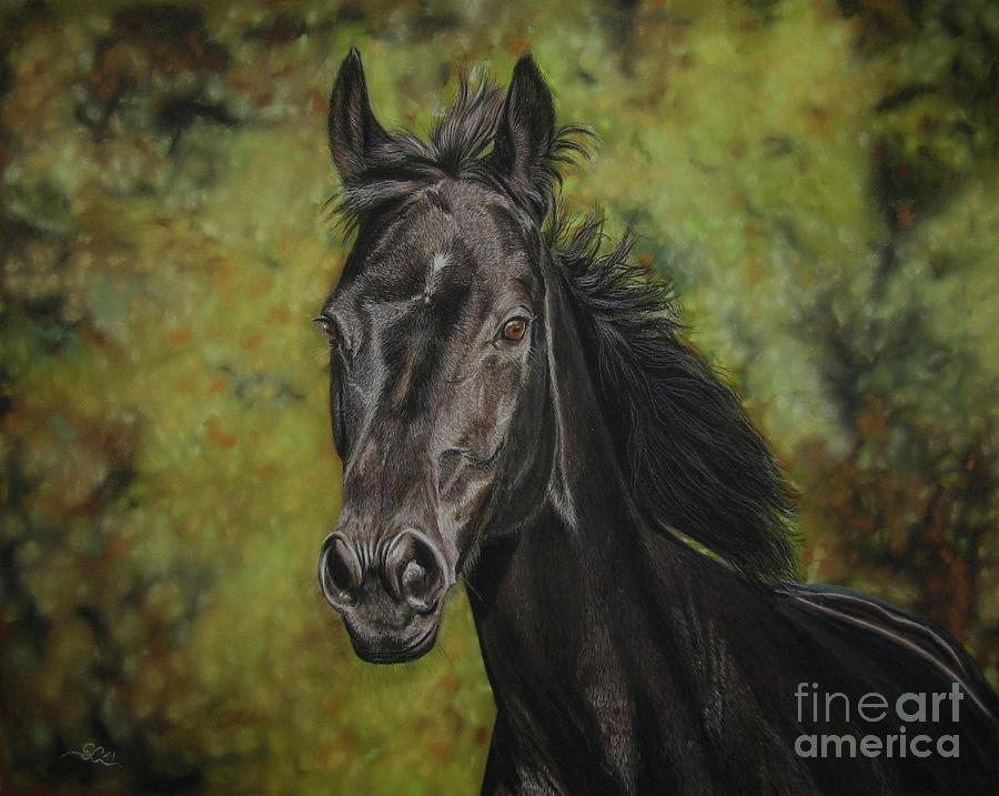 Horse Photograph - Rubina - Spirit Of My Soul by Sabine Lackner