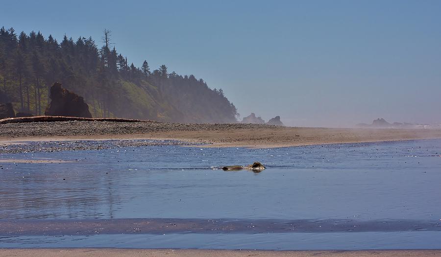 Ruby Beach Photograph