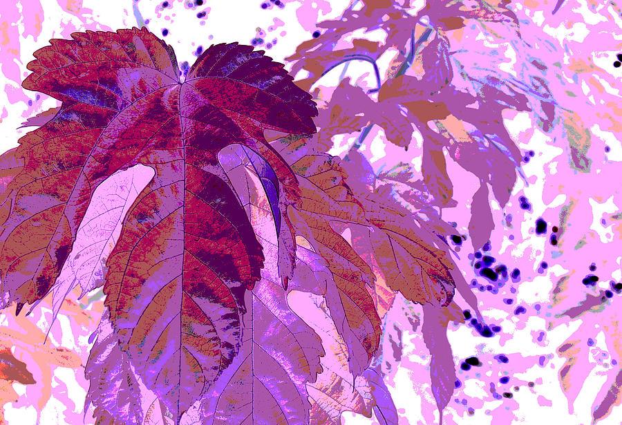 Ruby Digital Art - Ruby Leaves by Richard Coletti