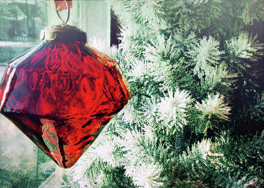 Holiday Photograph - Ruby Red by JAMART Photography