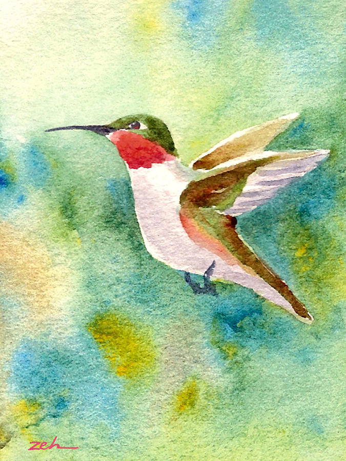 Ruby-throated Hummingbird by Janet Zeh