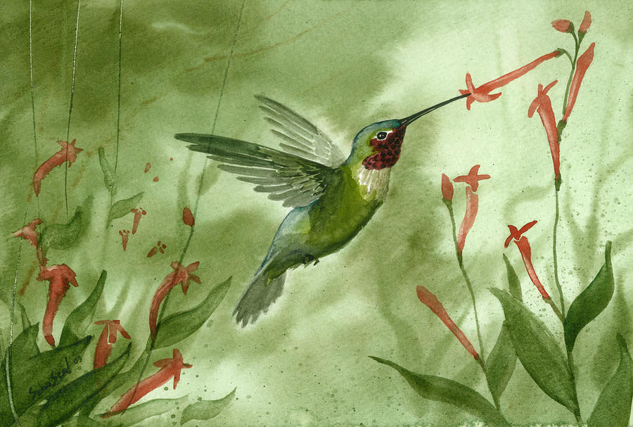 Birds Painting - Ruby Throated Hummingbird by Sean Seal