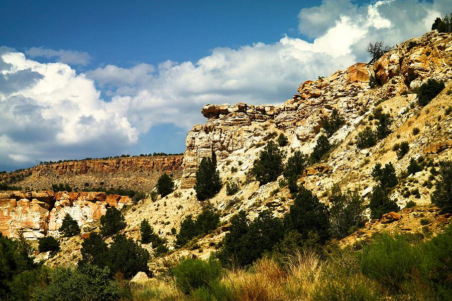 New Mexico Photograph - Rugged New Mexico by Jeff Swan