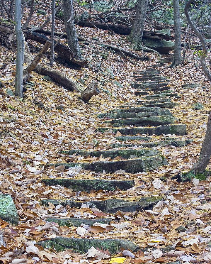 Rugged Path Photograph by Alan Raasch